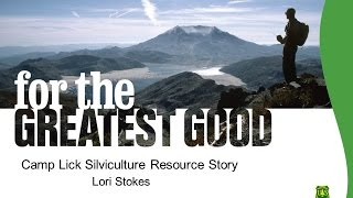 Camp Lick Project Resource Story -- Silviculture