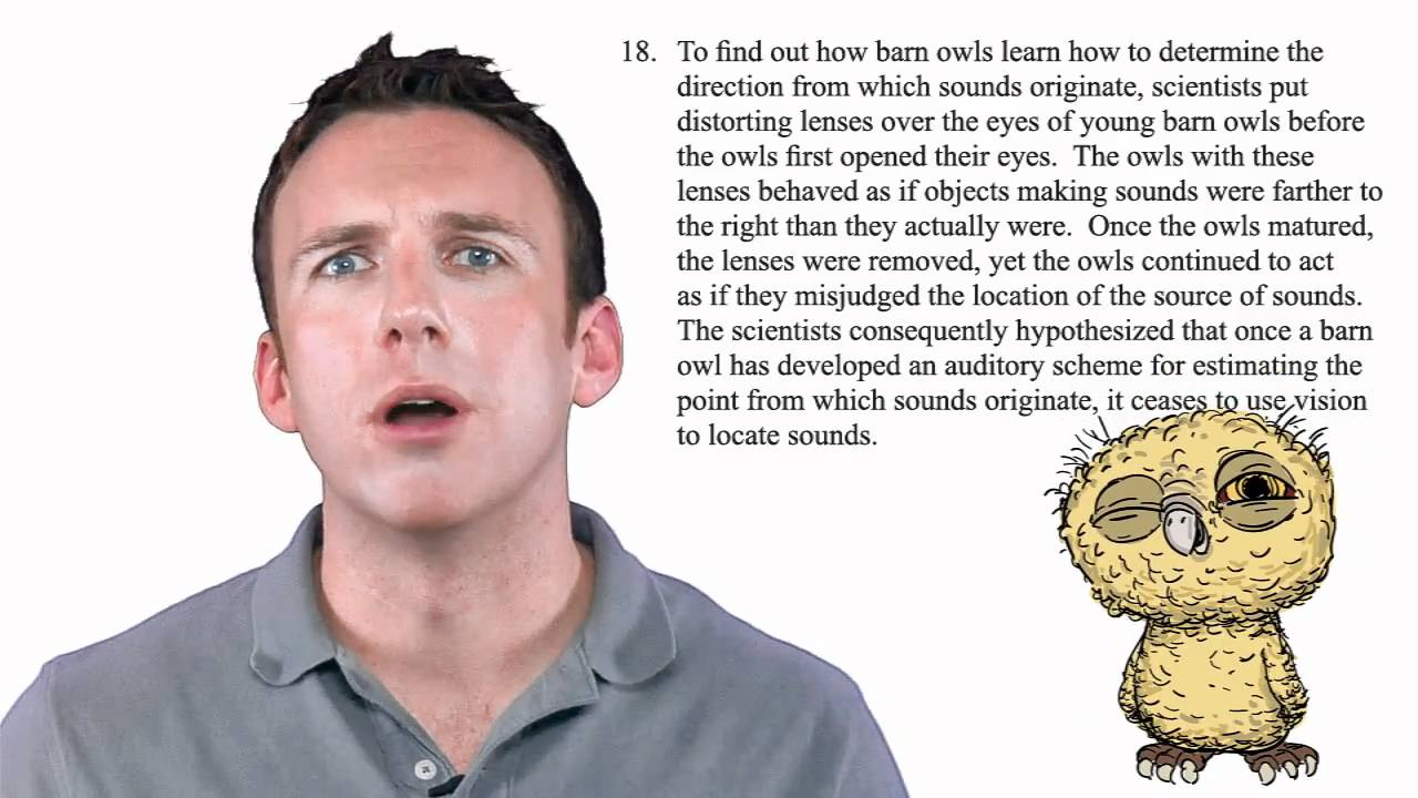 Blueprint lsat prep lsat instructor matt riley discusses barn blueprint lsat prep lsat instructor matt riley discusses barn owls in this lsat question malvernweather Image collections