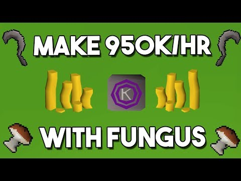 How to Make 950k/hr Collecting Mort Myre Fungus! - Oldschool Runescape Money Making Guide [OSRS]