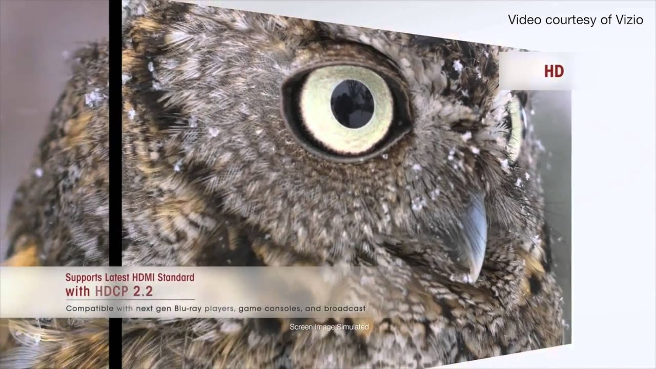 Cool Wallpaper Home Screen Owl - maxresdefault  You Should Have_296735.jpg