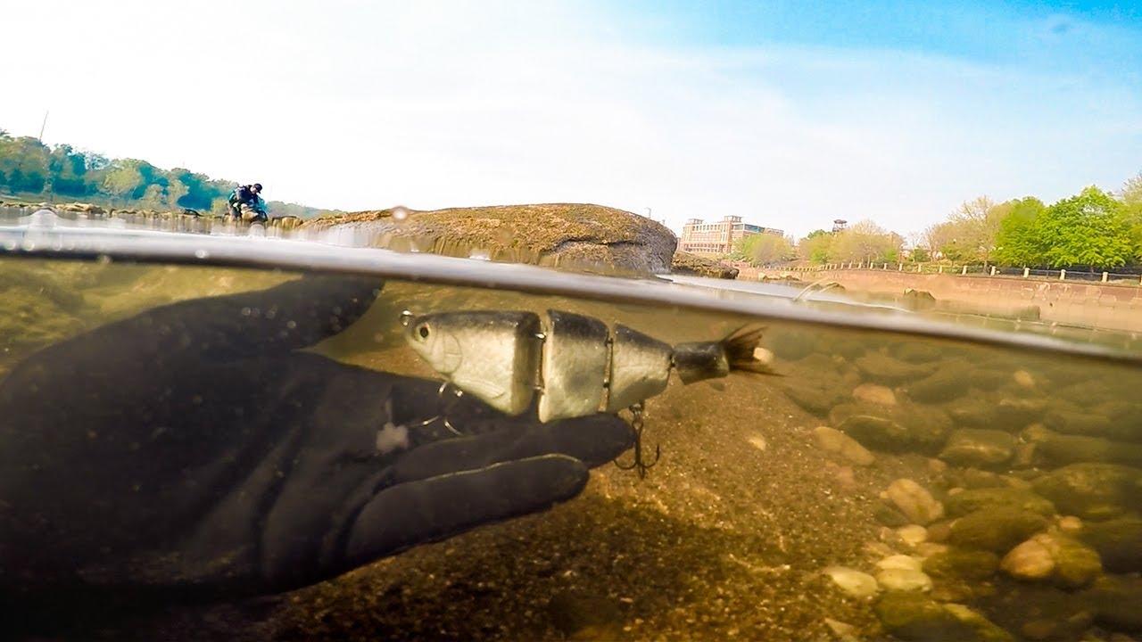 river-treasure-found-150-swimbaits-pellet-gun-ft-dallmyd