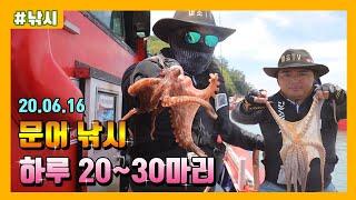 여수 문어낚시 선상 조황 하루 20~30마리(Feat.…