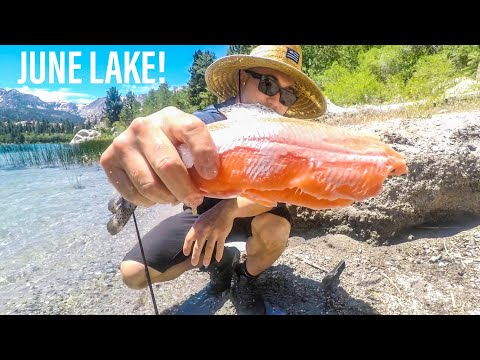 June Lake Fishing! What Not To Do!