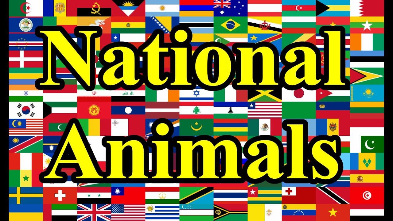 National animals of countries youtube biocorpaavc
