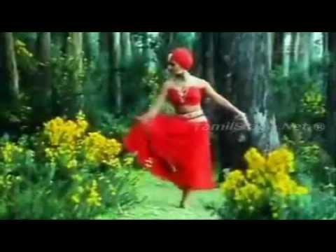 Aasa adhigam vachu video karaoke by Bala