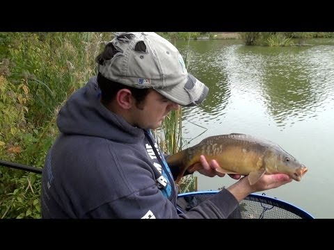 Method Feeder Fishing For Carp In Winter
