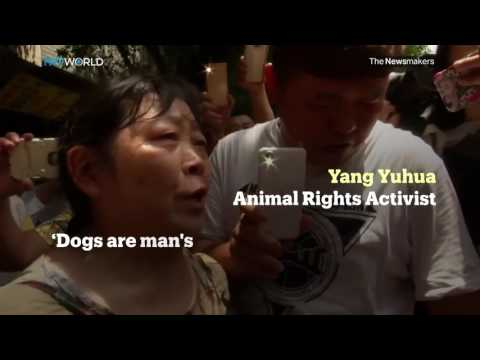 Picture This: Yulin Dog Meat Festival