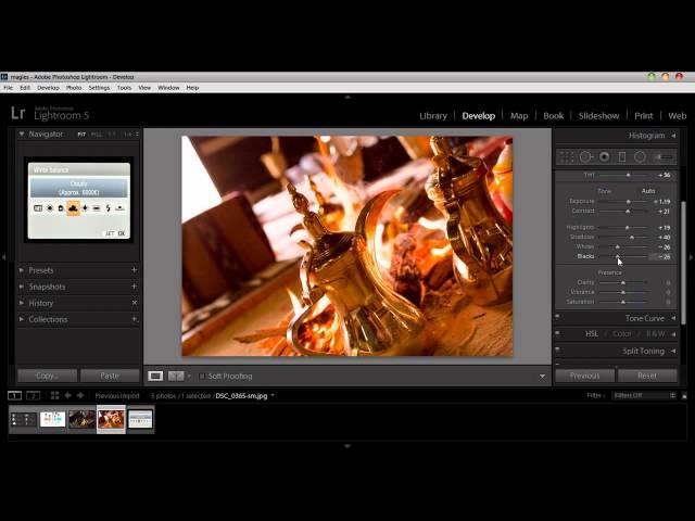 المحاضره الرابعة :: Adobe Lightroom 5