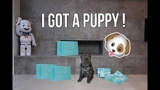 MEET MY NEW PUPPY + PUPPY SUPPLY SHOPPING!!!