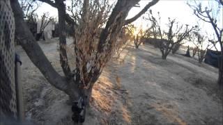 Video CQB Raven's Gate 7/18/2013 download MP3, 3GP, MP4, WEBM, AVI, FLV Januari 2018