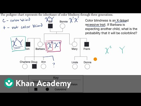 Pedigree For Determining Probability Of Exhibiting Sex Linked Recessive Trait | Khan Academy