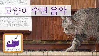 고양이를위한 음악 - 휴식, 진정 소리는 스트레스를 고양이에 도움