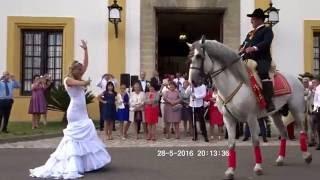 La Novia Baila con el Caballo | Jerez de la Frontera, Cádiz