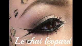 Maquillage Halloween: Le chat léopard!