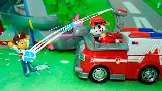 Щенячий патруль новые серии - Талант Скай! Мультики про машинки для детей от 3 лет развивающие!