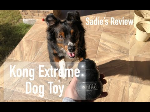 kong-extreme-dog-toy