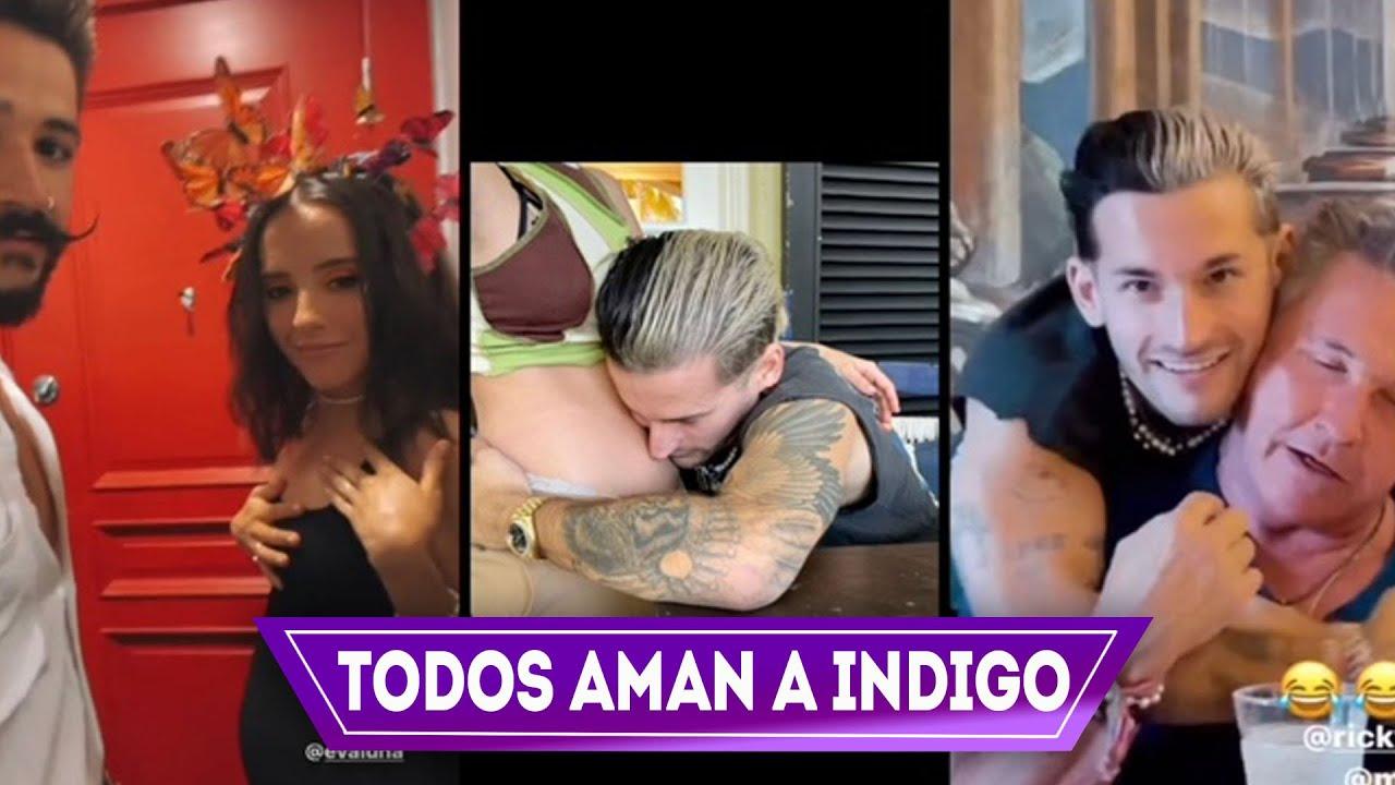 Todos aman a índigo el hijo de Camilo y Evaluna, la Reacción de la familia Montaner, no se la creen