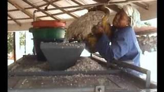 Recyclage de plastique à Thiès, Sénégal