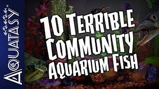 Aquatasy Countdown - 10 Terrible Community Aquarium Fish