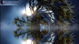 Deep Sleep Music, Insomnia Music, 3.4 Hz Delta Waves, Binaural Beats Sleeping Music