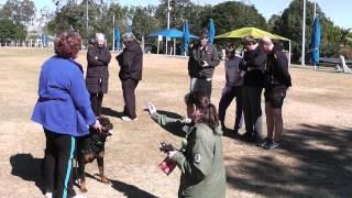 Rottweiler National Qld 2014 - Breed Survey Blakeco Burnin Goodtime Marnie (ai)