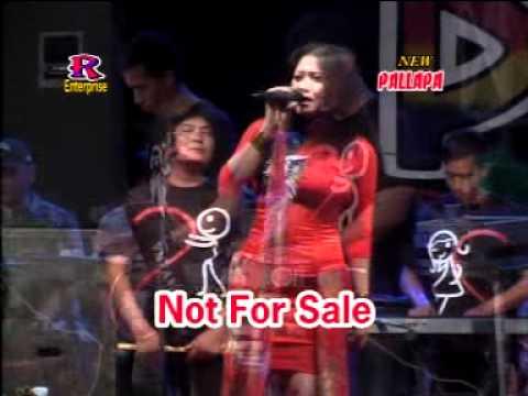 Tak Sebening Hati - New Pallapa Live In Socah Bangkalan Madura