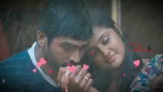 Enaku nee uraivedam    new whatsapp status tamil    romantic love    album song    paalvaadi