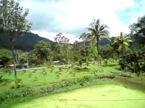Costa Rica Farm Tour november 2012