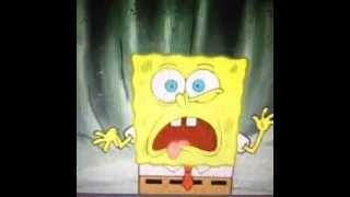 VINE !Good kush and alcohol! spongebob vine!