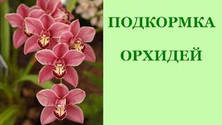 Фаленопсис. Подкормка орхидей. Когда их удобрять?(Фаленопсис. Подкормка орхидей. Когда их удобрять? Чтобы орхидеи всегда радовали своим великолепным цветени..., 2016-06-27T16:41:26.000Z)