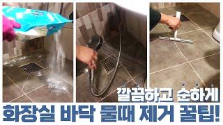 초초초간단 화장실 바닥 물때 제거 1분 꿀팁!