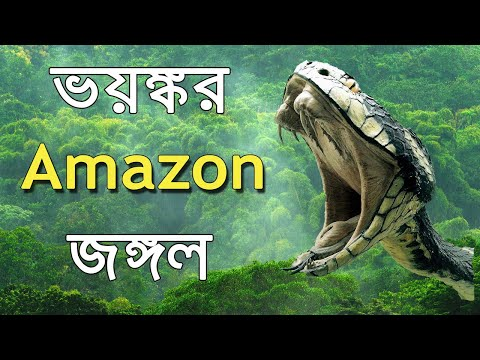 Amazon jungle animals video | আমাজন জঙ্গলের ভয়ঙ্কর প্রাণী