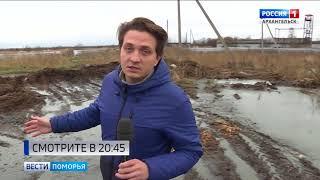 Фермеру из Приморского района грозит крупный штраф за нарушение правил утилизации животных
