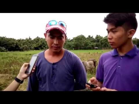 reFARMation (An Agrarian Reform Documentary)