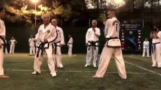 Master Vasilis Alexandris- ITF Taekwon-Do Kicking exercises- Olympos 2016