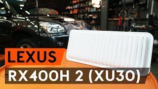 Comment remplacer un filtre à air sur LEXUS RX400h 2 (XU30) [TUTORIEL AUTODOC]