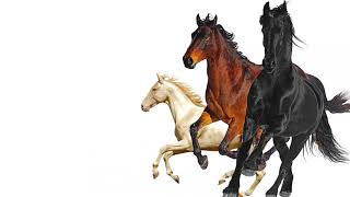 Lil Nas X feat Billy Ray Cyrus & Mason Ramsey - Old Town Road (Remix)