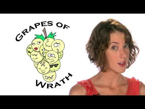 The Grapes of Wrath   Summary/Overview   60second Recap®