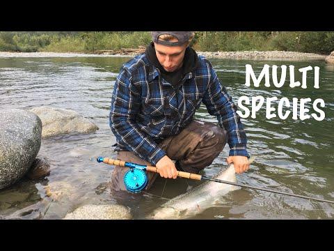 Vedder River Salmon Fishing