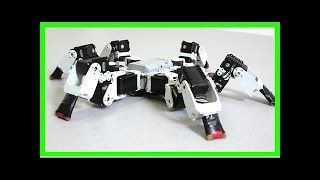 Special gait helps this six-legged robot outpace insects