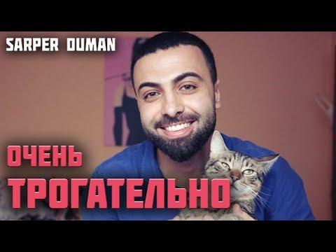 Sarper Duman и его история. Как бездомный кот и музыка изменили жизнь человека!