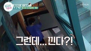 [선공개] 어설픈 홍자네 이삿짐센터 '불안해...' […