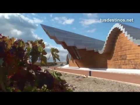 Vinos y Bodegas / Vendimia en  RIOJA ALAVESA. Visitas a viñedos - Winecellar vineyards - rutas tour