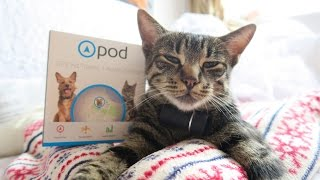 REVIEW OF THE POD TRACKER    * KEEPING YOUR PET SAFE * DOG/CAT
