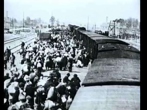 Auschwitz - Souvenirs du prisonnier No 1327 /documentaire/ camp de concentration