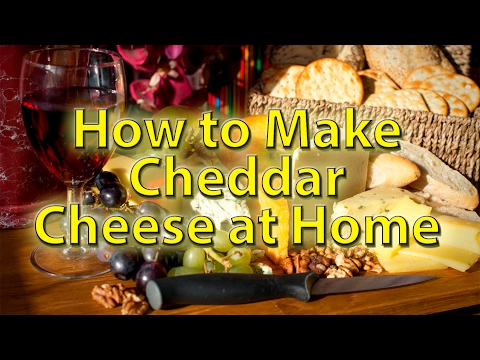 Cheddar Cheese made at home