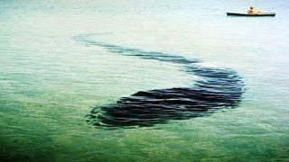 Гігантський підводний змій в Криму. Карадазький змій