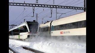 Züge Im Schnee - St. Gallen-Winkeln