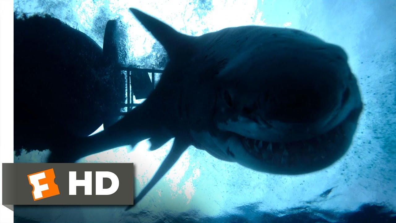 Download The Shallows (10/10) Movie CLIP - Impaled (2016) HD