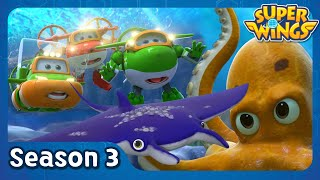 Searching for a Manta Ray | super wings season 3 | EP28